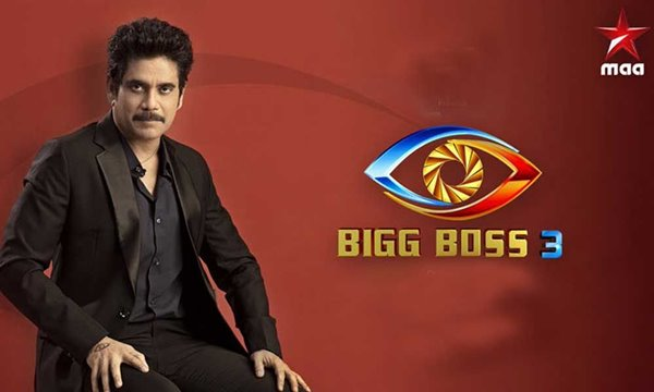 Bigg Boss Telugu Vote Season 3