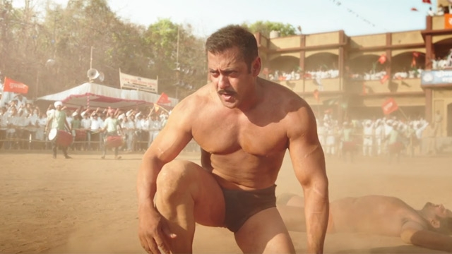 Sultan Movie Hit or Flop Verdict